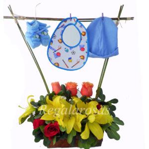 Recien Nacido Regala Rosas a domicilio en santiago