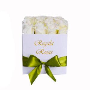 Regala Rosas blancas cinta verde a domicilio en santiago