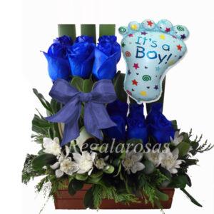Regala Rosas Recien nacido a domicilio en santiago