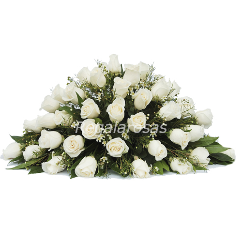 Cojin con 100 rosas blancas ecuatorianas a domicilio en santiago