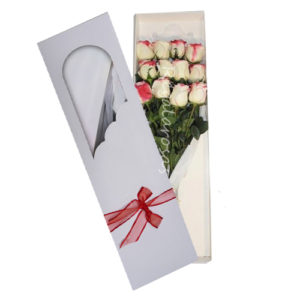 Caja con 12 rosas bicolor a domicilio en santiago