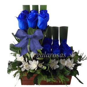 Arreglo de Rosas Azules a domicilio en santiago